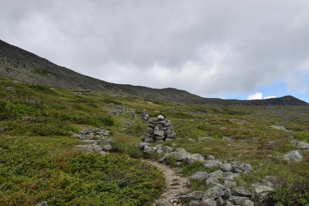 Mt-Washington-Alpine-Garden-Trail-