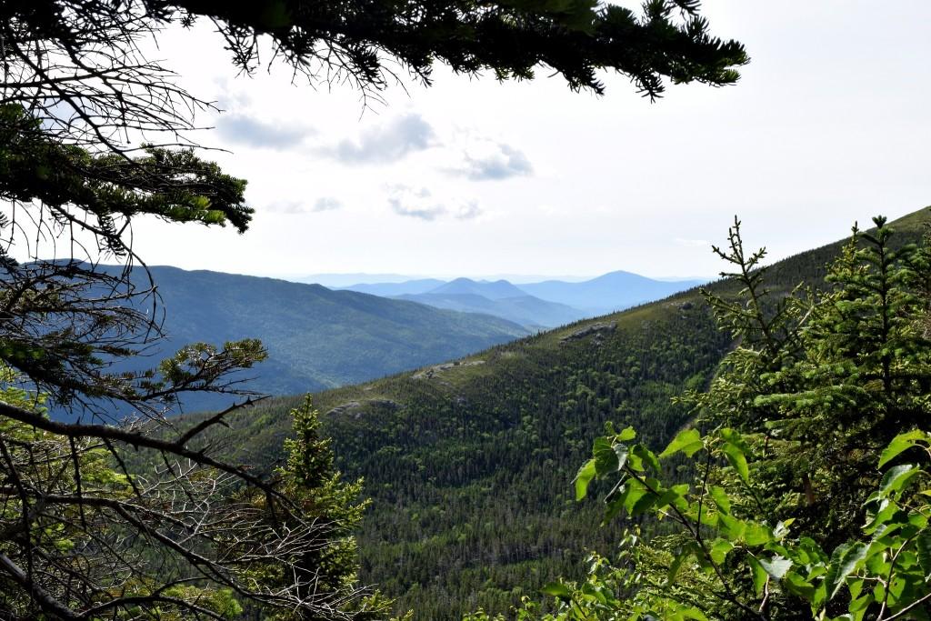 Mt-Washington-Lions-Head-Trail-2