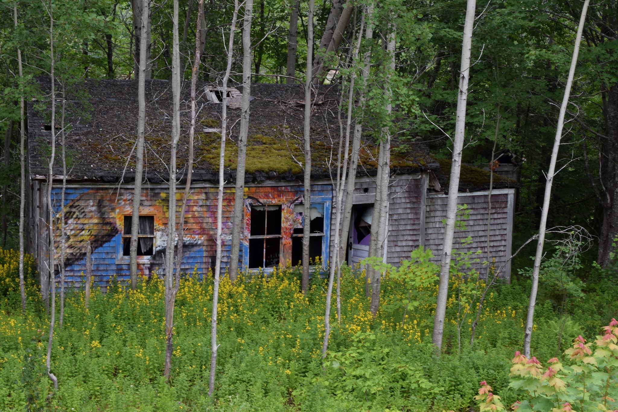fox-house